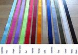 Choose your seatbelt color